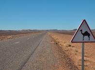 on the road - segnali locali