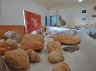 il sorprendente museo del deserto di Hèdi